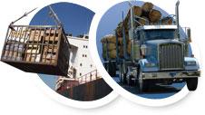 Cargo & truck